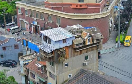 manbetx手机登录注册新闻上海梦幻鸽棚
